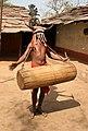 Inde bison muria9471a.jpg