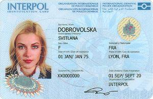 Interpol - Interpol ID card (front)
