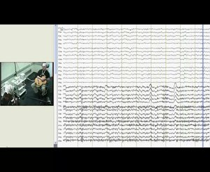 File:Intra--and-Inter-Brain-Synchronization-during-Musical-Improvisation-on-the-Guitar-pone.0073852.s012.ogv