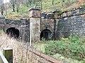 Inverkip railway tunnels - geograph.org.uk - 1620889.jpg