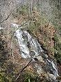 Isaqueena Falls, 2009-11-26.JPG