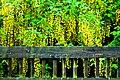 Italian Gardens, Scarborough (3562831143).jpg