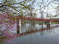 Iusb-bridge.jpg