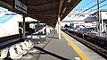 JREast-Tokaido-main-line-Kamonomiya-station-platform-20180109-142928.jpg