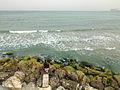 Jaffa, fisherman (493947468).jpg