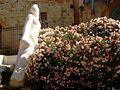 Jaffa Statue - panoramio.jpg