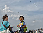 Japanese-American Friendship Festival 2014 140906-F-PM645-517.jpg