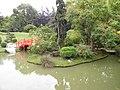 Jardin japonais - pont (Toulouse) (1).jpg