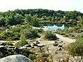 Jeziorko Krystalso - panoramio.jpg