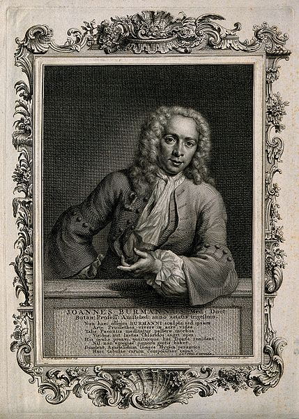 File:Joannes Burmann. Line engraving by J. Houbraken after J. M. Wellcome V0000917.jpg