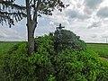 Kříž u samoty Krčma (Q104974365).jpg