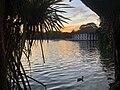 Kandy river.jpg