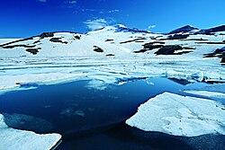 Kari Lake.jpg
