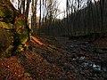 Kemence, Rózsa-patak, 2009-11-20 - panoramio (4539).jpg