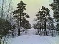 Kilpolantie - panoramio (8).jpg
