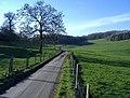 Kingscote Park - geograph.org.uk - 321044.jpg