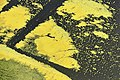 Kiskörei víztározó látképe madártávlatból.jpg