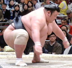 Controversies in professional sumo - Kiyoseumi was forced to retire after an investigation found him guilty of match-fixing.