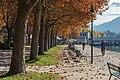 Klagenfurt Friedelstrand Platanen-Allee mit Promenade 09112015 2310.jpg