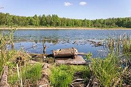 Knyazhoe Lake - 007.jpg