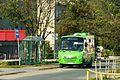 Kowanowo bus.JPG