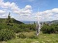 Krokonose - panoramio.jpg