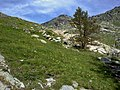 La Roya Casterino Fontanalba Vallee Merveilles Voie Sacree - panoramio (2).jpg