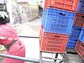 Lady pulling cart.JPG