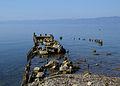 Lake Ohrid near Ohrid.JPG