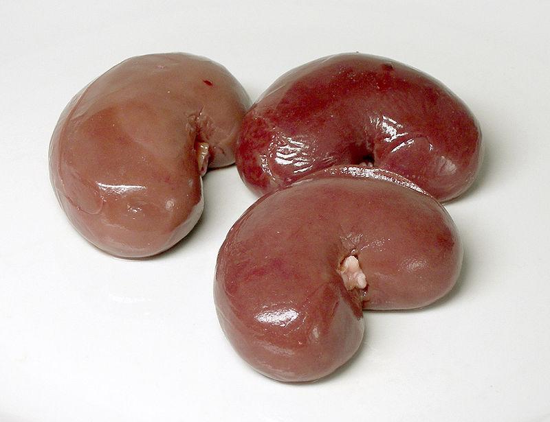 Jehněčí ledviny