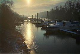 Lampertheimer Altrhein im Winter 2005.JPG