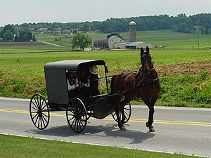An Amish family in a horse-drawn square buggy passes a farmhouse, barn and granary; more farms and forest in the distance.