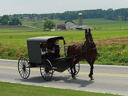 An Amish family riding in a traditional Amish buggy Lancaster County Amish 03.jpg