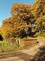 Lane, Lower Old Park - geograph.org.uk - 282203.jpg