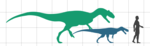 Langenburg theropod size.png
