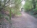 Langley Road Bridge - geograph.org.uk - 398271.jpg