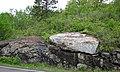 Large anorthosite xenolith in ophitic ilmenite gabbro (anorthosite series, Duluth Complex, Mesoproterozoic, 1099 Ma; Keene Creek East Skyline Parkway roadcut, Duluth, Minnesota, USA) 1 (22039818790).jpg