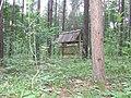 Las w okolicach Grobli - panoramio.jpg