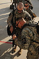 Last U.S. Brigade Combat Team Conducts Movement Out of Iraq DVIDS310699.jpg
