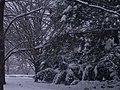 Letenské sady - panoramio (50).jpg