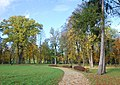 Lipinki, park.jpg