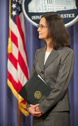 Lisa Madigan - Illinois Attorney General Lisa Madigan in a briefing about a Wells Fargo lawsuit in 2012