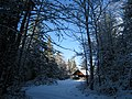 Little Home in the Snowy Woods - panoramio.jpg
