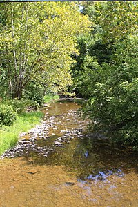Little Shamokin Creek.JPG