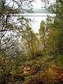 Loch Laggan - geograph.org.uk - 262724.jpg