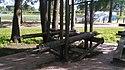 Log lifting exercise.jpg