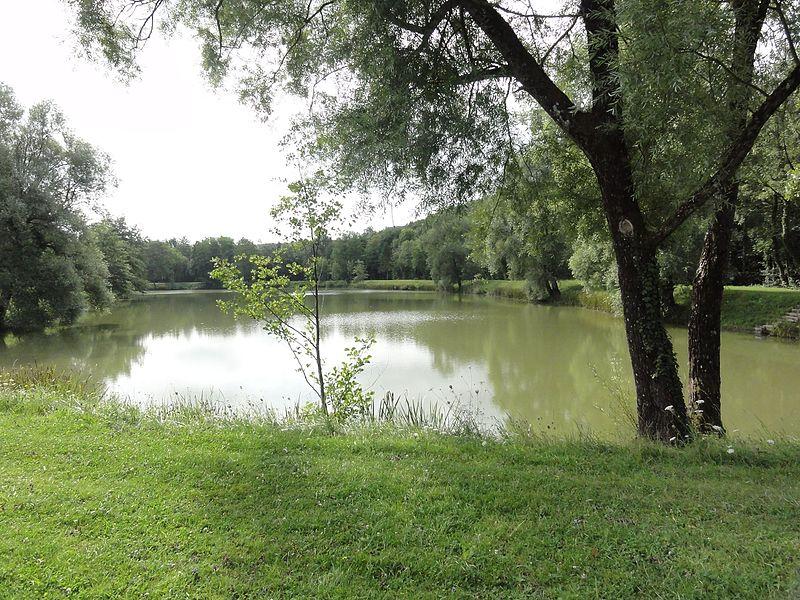 Longeville-en-Barrois (Meuse) parc et étang