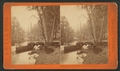 Looking up the Merced River, Yosemite Valley, Cal, by J. W. & J. S. Moulton.png