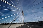 Looking up while driving over the Port Mann Bridge.jpg