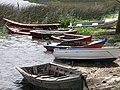 Los botes - panoramio.jpg